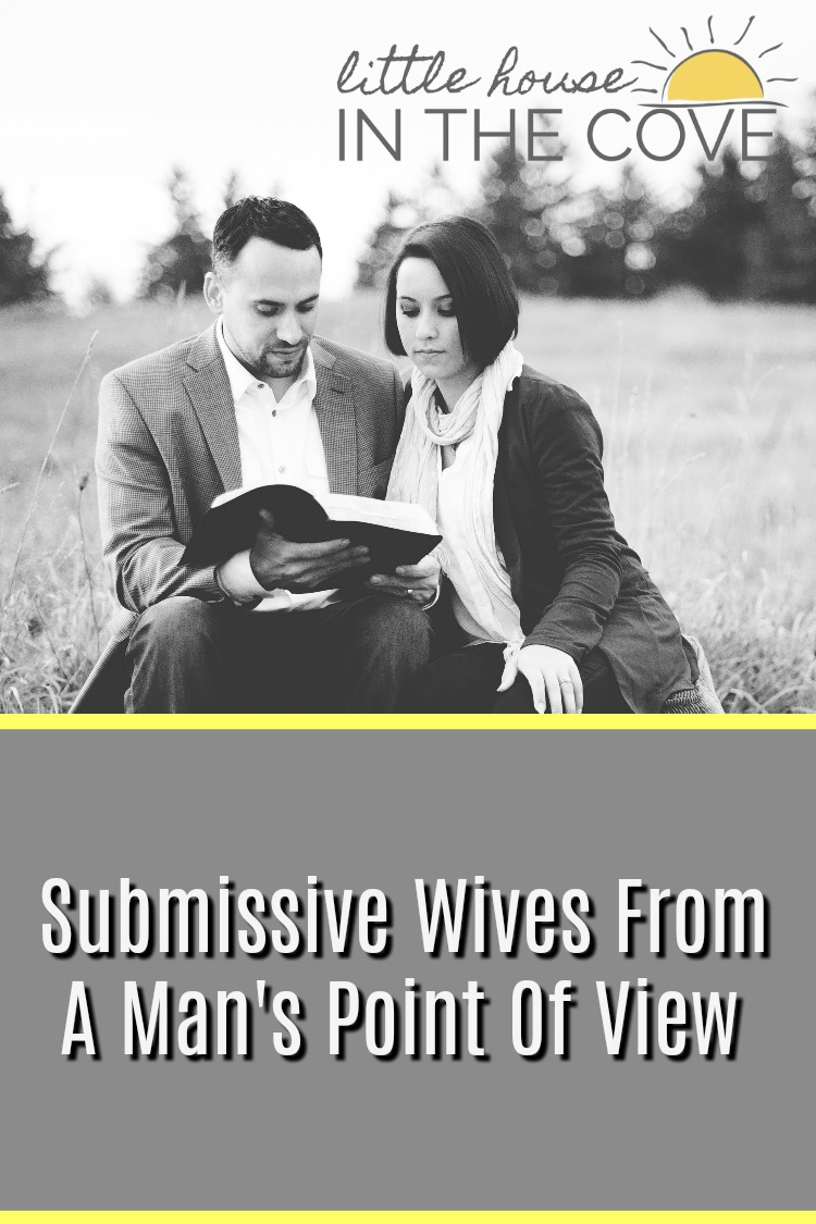 We women can talk about being a submissive wife all day long. However today my husband as agreed to talk about submissive wives from a man's point of view.