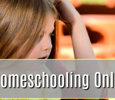 A New Homeschooling Online Tool – An IXL Review