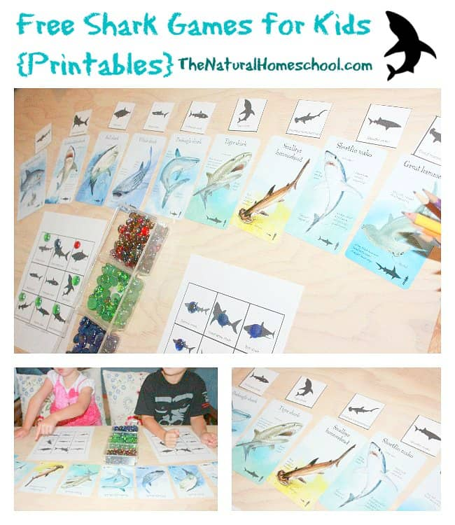 Children love learning about sharks. So why not take their love of sharks and use it to help them learn in the process!! Theses shark games are sure to be a winner.